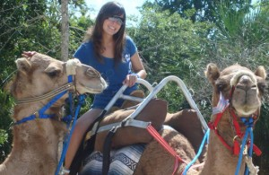 Camel Safari in Riviera Maya