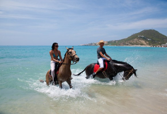 St. Maarten horseback riding