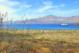 Sea of Cortez with Un-Cruise Adventures