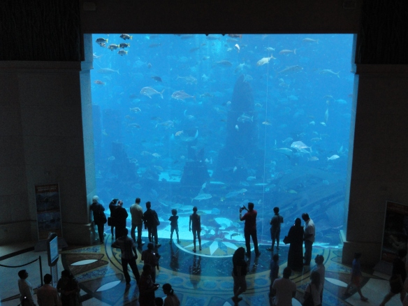 The Lost Chambers Aquarium Dubai