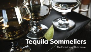 Tequila Sommeliers